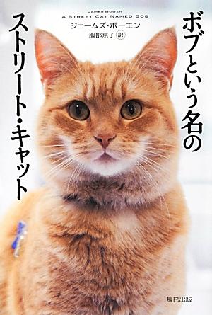 bobstcat